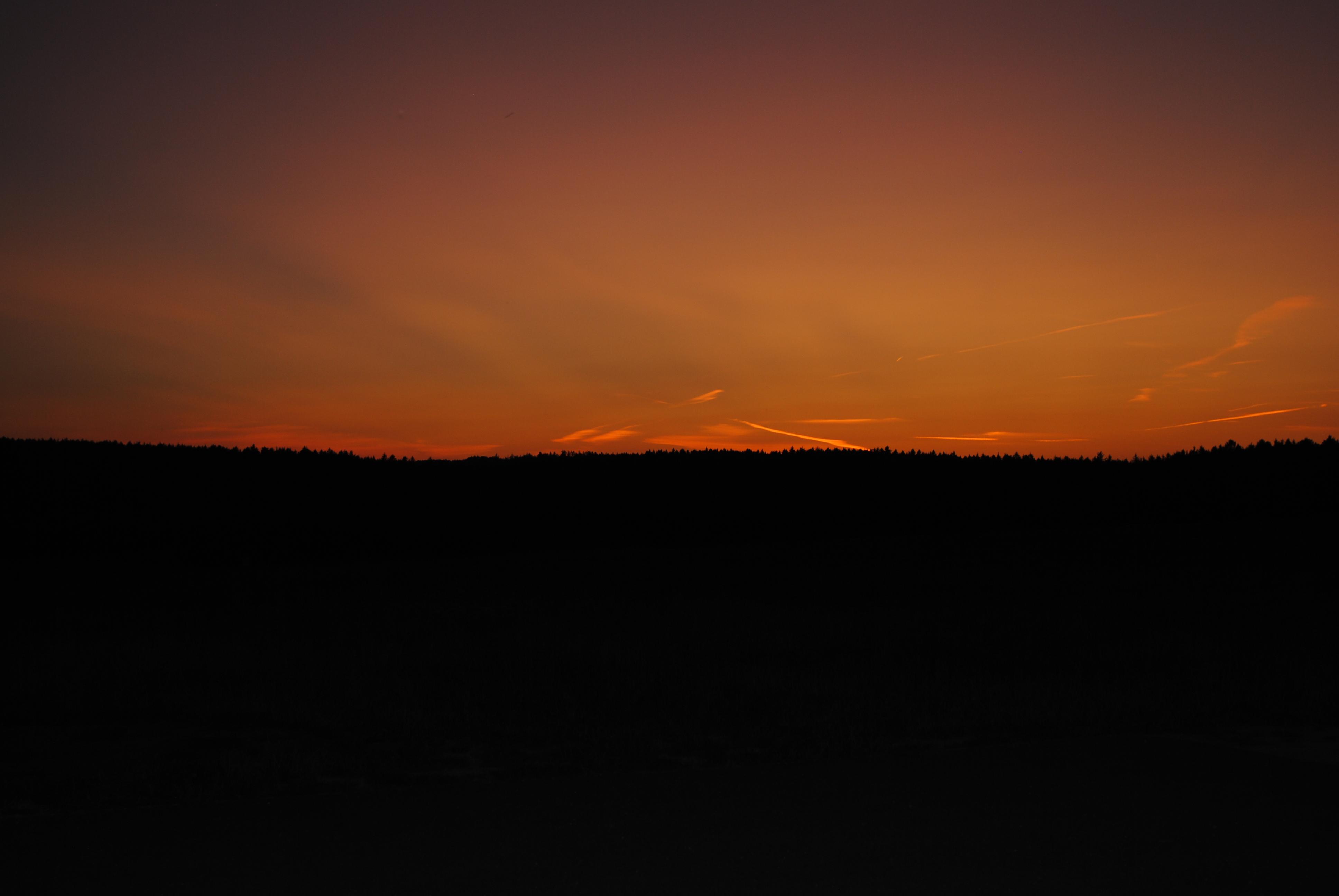 Der Hienheimer Forst bei Sonnenuntergang.